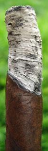Palmas Maduro - Tilted Burn Line