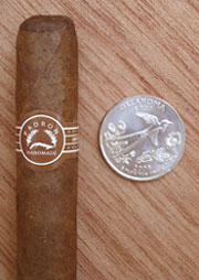 Palmas Natural with Quarter