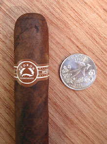 5000 Maduro with quarter for comparison