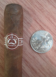 Executive Maduro with quarter for comparison
