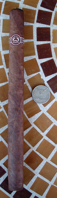 Magnum Natural with Quarter for comparison