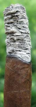 Panetela Maduro Ash with Grain