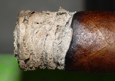 Cameroon Ash